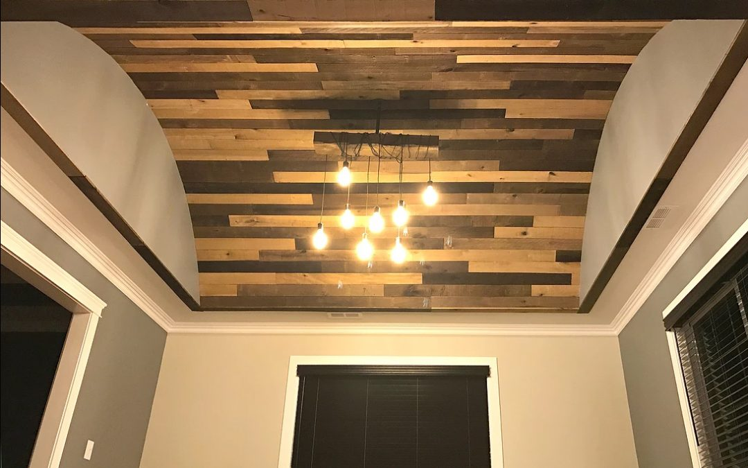 Living Room Ceiling and Lighting