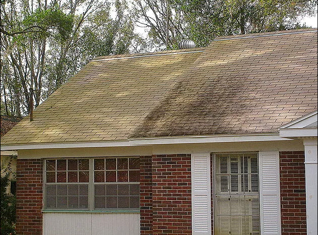 What to look for in the roof when you're buying a home
