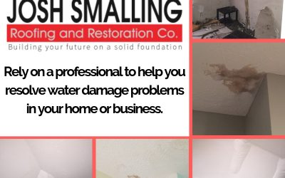 Professional Roofers Reveal Full Scope of Water Problems